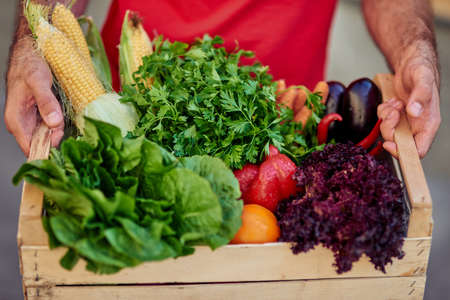 Courier holding grocery box with fresh vegetables for delivering, close up shot Фото со стока