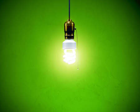 conservation: Compact Fluorescent Bulb - On Simple fixture
