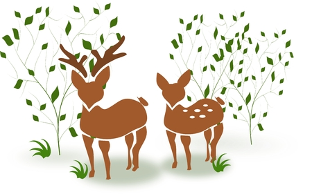 Illustration of couple of deer standing between trees illustration