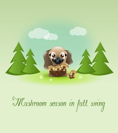 Cute brown dog with basket of mushroom photo