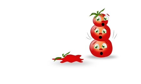 flattened: Three tomatoes with one flattened on ground