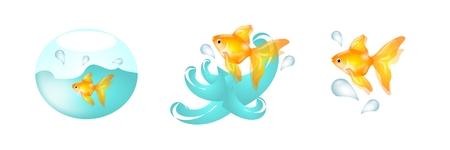goldfish jump: Set of three goldfish in water