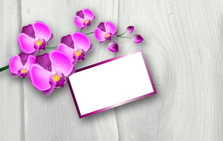 rich couple: Illustration of twig with bloom of pink orchid on wooden background with blank tag Stock Photo