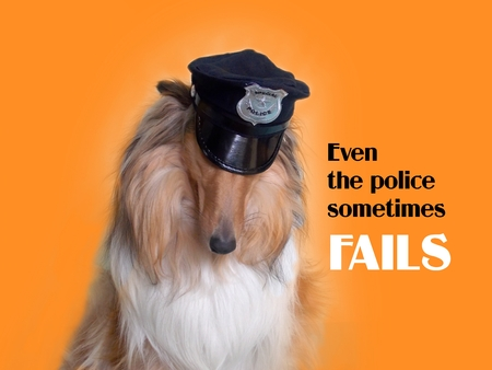 fails: Collie dog with sloping head and text Even the police sometimes fails Stock Photo