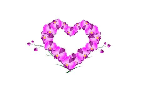 unusual valentine: Illustration of pink orchid heart on white background