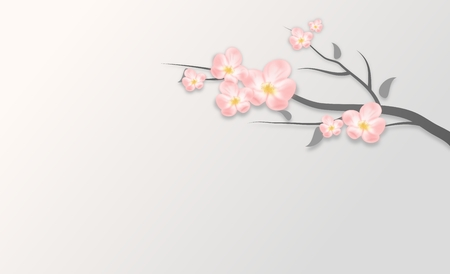 a twig: Light pink blossom on twig of tree background illustration Stock Photo
