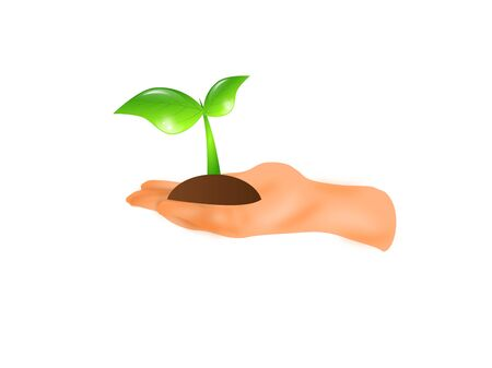 small plant: Illustration of human hand with small plant