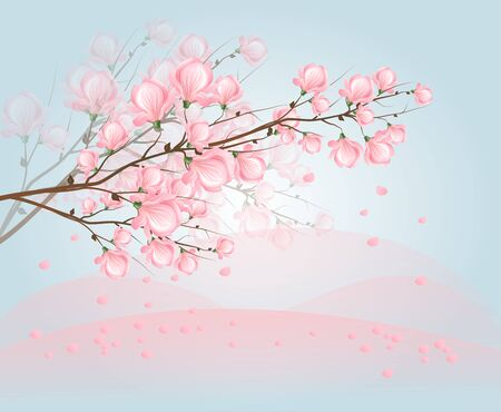magnolia tree: Illustration of twig of tree with light pink blossom of magnolia with light blue background Stock Photo