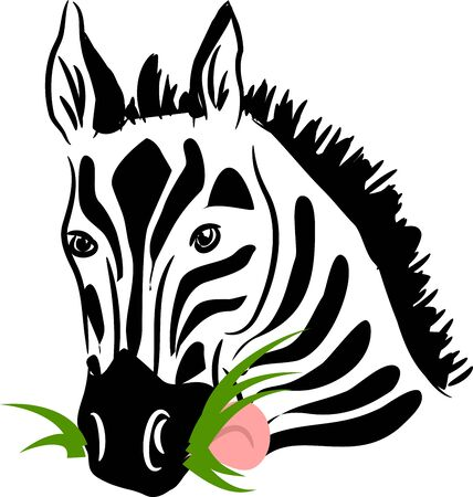 animal tongue: Vector illustration of zebra head as eating grass Illustration