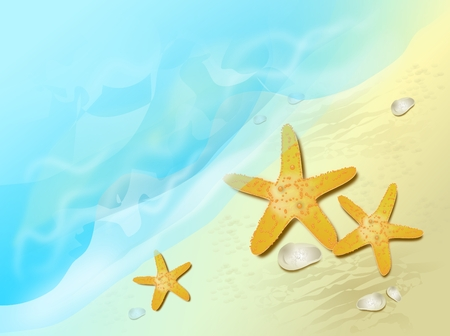 sea water: Sandy beach with sea water and starfish and small rocks