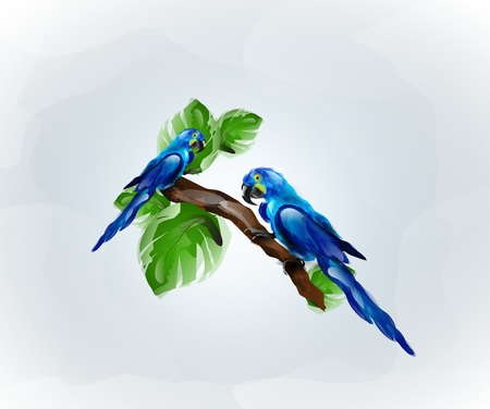a twig: Illustration of two blue parrots sitting on twig of tree