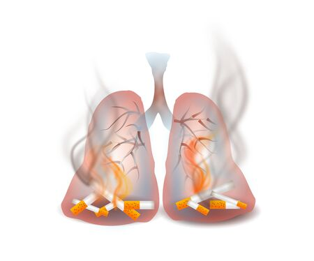 sick malady: Illustration of unhealthy smoking lungs on white background Stock Photo