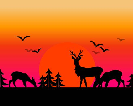 grassing: Illustration of sunset landscape with grassing deer