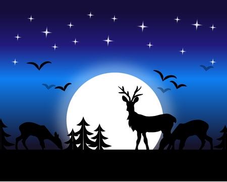 grassing: Illustration of night landscape with grassing deer