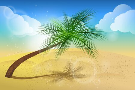 sandy: Illustration of summer background with palm tree and sandy beach