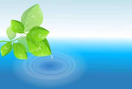 Illustration of green leaves with water drop falling to the water surface