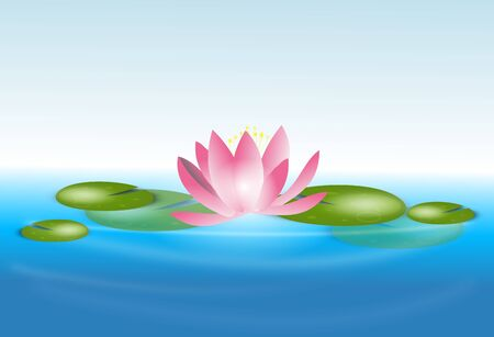 waterlily: Beautiful illustration of light pink waterlily on water surface Stock Photo