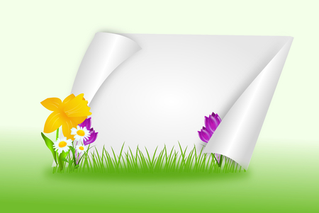 natue: White paper decorated with spring flowers and grass background