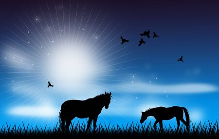 early in the evening: Illustration of horses on grass with blue evening sky