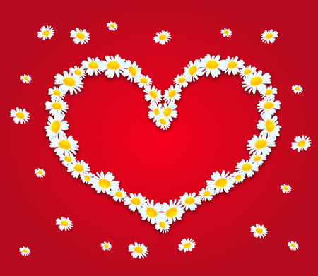 blooms: Illustration of heart set of daisy blooms on red background