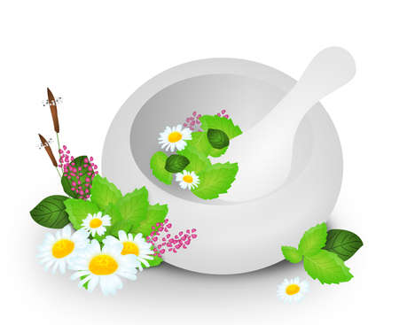 contemporary taste: Illustration of white mortar with herbal flowers Stock Photo
