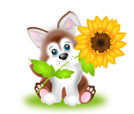 sunflower isolated: Illustration of cute puppy with sunflower isolated Stock Photo