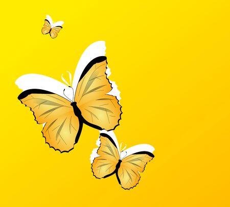 mariposas amarillas: fondo amarillo decorado con tres mariposas amarillas