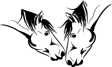 Vector illustration of two horse kissing each other