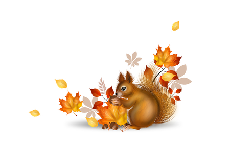 Illustration of cute squirrel with autumn decoration Stok Fotoğraf