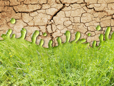 Photo manipulation of dry ground with green grass Stock Photo