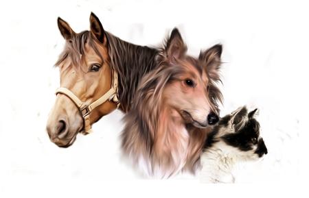 Illustratie van dierlijke groep - paard, hond en kat