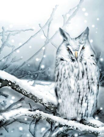 Illustratie van sneeuwuil zittend op een takje van de boom in de winter