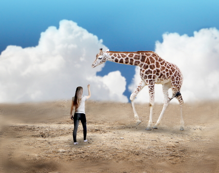 Photo manipulation of young woman and giraffe
