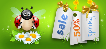 Cute illustration of ladybug on white daisy flowers and tag of spring sale
