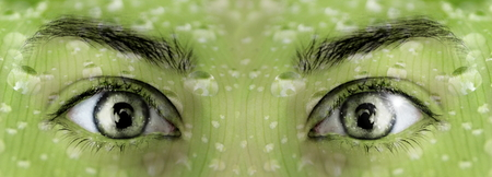 Photo manipulation of green eyes with green background