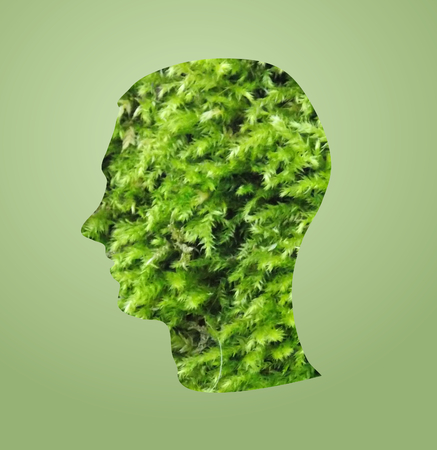 Photo manipulation of head set of green grass Stock Photo