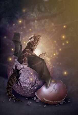 New born dragon from egg fantasy manipulation