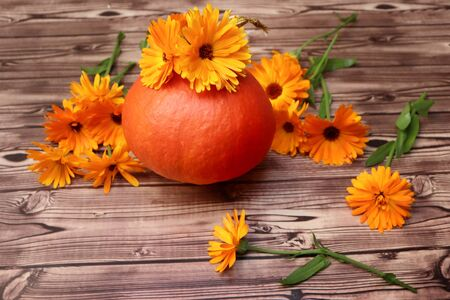 Photo of marigold with pumpkin on wooden background