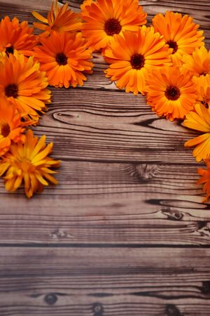 Photo of marigold on wooden background with space
