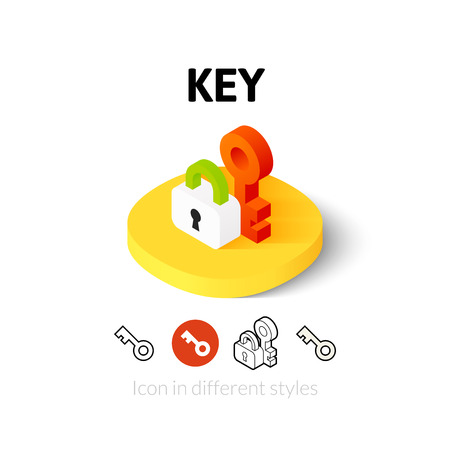 Key icon, vector symbol in flat, outline and isometric style