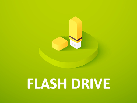 Flash drive icon, vector symbol in flat isometric style isolated on color background Illustration