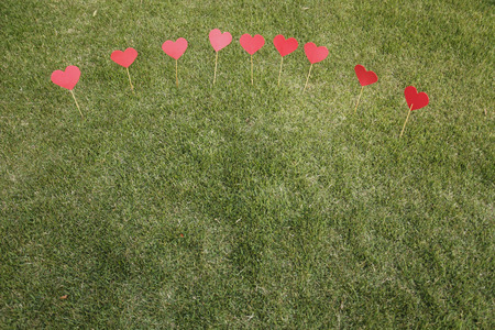 Heart shape cut out and applied with sticks on the lawn Stock Photo