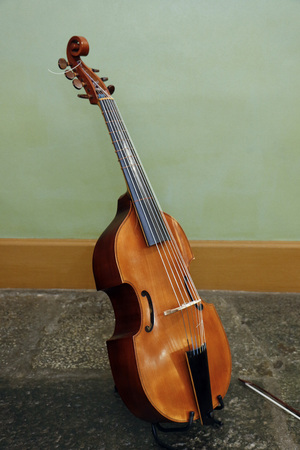 Wooden musical instrument Viola de Gamba Wooden violin in instrument stand