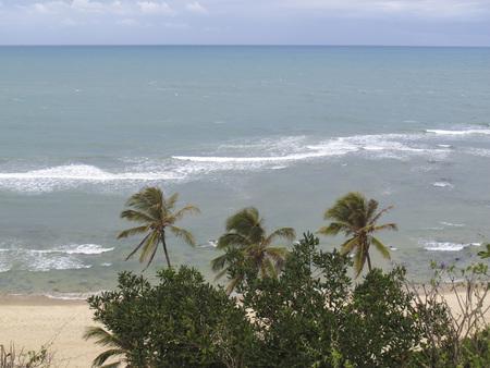 Landscape of Pipa beach and Baia dos Golfinhos - Beach of Natal, Rio Grande do Norte, Tibau do Sul, northeastern coast of Brazil - holidays in Brazil