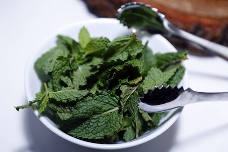 medicinal plant and spice mint leaves Mentha spicata in glass pot