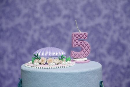 delicious candy party, five year old birthday cake, candy celebration, reception, food