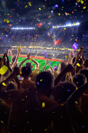 soccer fan: Fans on stadium soccer game Confetti and tinsel
