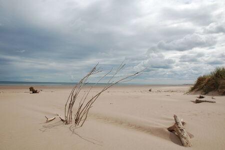 strand: Strand Engeland