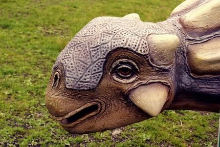 prehistoric animals: Head of a dinosaur
