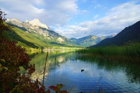Alps Banco de Imagens
